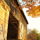 Dappled Barn by Heather  Andrews Kosinski