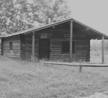 Old Ranger's Cabin  by MaeBelle