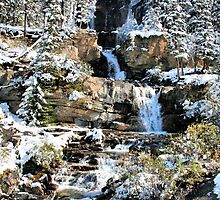 Tangle Falls, Jasper National Park by Vickie Emms