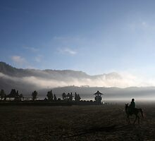 Bromo Temple In The Morning by Ine Beerten