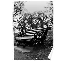 Bench with eaves dropping trees Poster