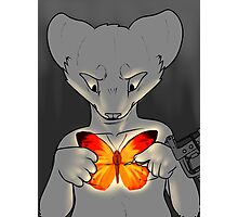 The Butterfly Project Photographic Print