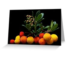 Beautiful Berries II Greeting Card