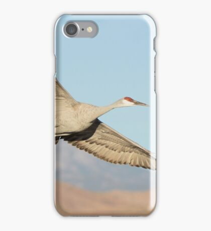 Leaving the roost iPhone Case/Skin