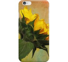 Painted Golden Beauty iPhone Case/Skin