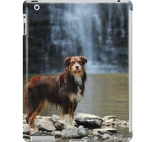 Australian Shepherd at the Waterfall iPad Case/Skin