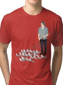 Camerons pet seagulls Tri-blend T-Shirt