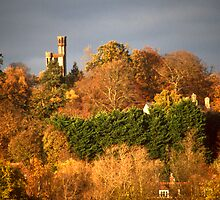 A TOWER IN THE DISTANCE by Gary Rayner