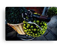 Bike Basket Canvas Print