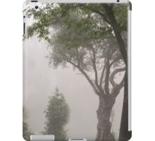 February Morning Fog iPad Case/Skin