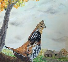 Ruffed Grouse On Alert by Jack G Brauer