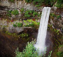 Brandywine Falls by Tommy Au