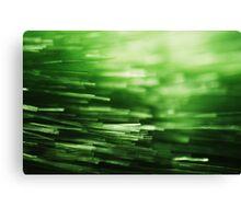Abstract Macro #98 Canvas Print