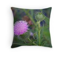 Spear Thistle  Throw Pillow