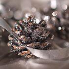 Ice Pine Cones by Angela  Ardis