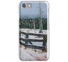 Pike River Crossing iPhone Case/Skin