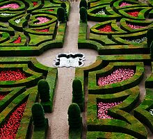 Formal Garden - Chateau Villandry, Loire Valley 3 by Alison Cornford-Matheson