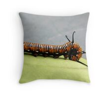 Caterpillar of Crow butterfly  Throw Pillow