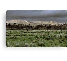 Snowy Mountains - NSW, Australia Canvas Print