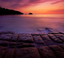 The Tesselated Pavement In Dawn by Michael Walters