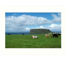 Farm land and the Stanley nut on the far nor west coast of Tasmania Art Print