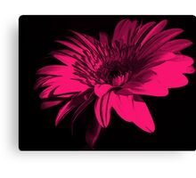 The Colour of my Love Canvas Print