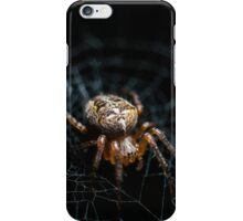 Spider on the Web  iPhone Case/Skin
