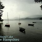 Newfound Lake Poster by Wayne King