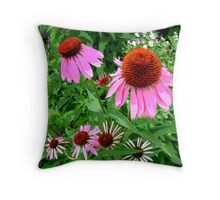Coneflowers Throw Pillow