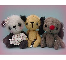 Sooters, Sweepers and Sooze. Handmade bears from Teddy Bear Orphans Photographic Print