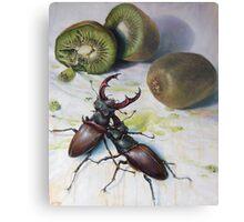 """ Kiwis and Stag Beetles ( Struggle for Constancy)"" Metal Print"