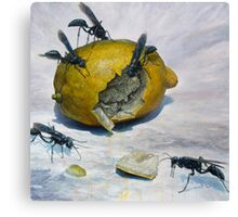 Lemon and Mud Daubers Canvas Print