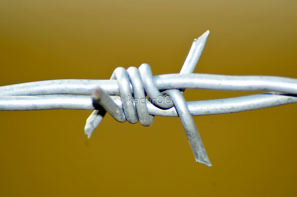 new barbwire by kachr00