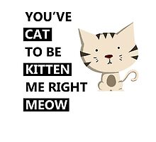 You've Cat To Be Kitten Me Right Meow by Mellenz