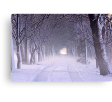 Snowy Winter Alley in Park Canvas Print