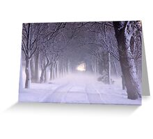 Snowy Winter Alley in Park Greeting Card