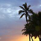Sunset and Palms by Kimberly Johnson