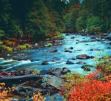 AUTUMN, MERCED RIVER by Chuck Wickham