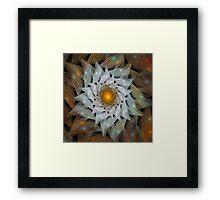 'Flower Sun' Framed Print
