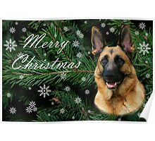 German Shepherd Merry Christmas 2008 Poster