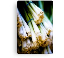 Green Onions Canvas Print