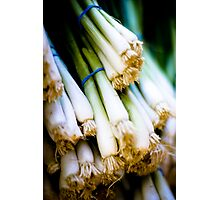 Green Onions Photographic Print