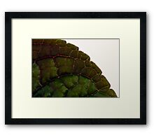 Leaf Details - Macro  Framed Print