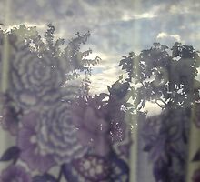 Suburban veil by purelydecorative