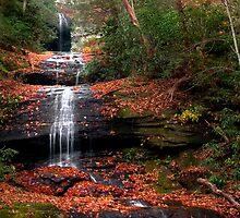 Upper DeSoto Falls by David Lampkins