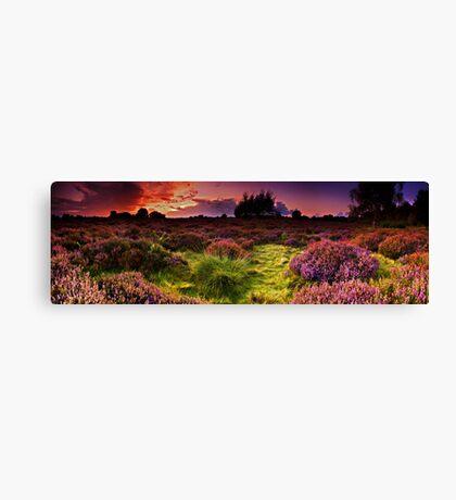 Dunwich Heath Panoramas. Canvas Print