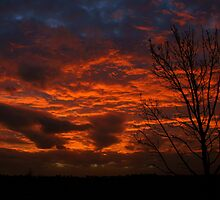 Red Sunset over Deniliquin NSW by Jeff D Photography
