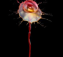 Flower Power! by JBlaminsky