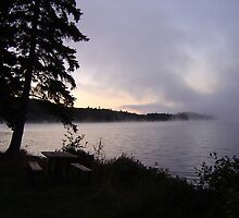 Algonquin Morning Fog by ca2hill