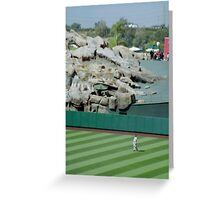 Red Sox anyone? Greeting Card